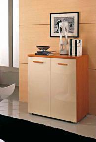 Модерен шкаф с две врати